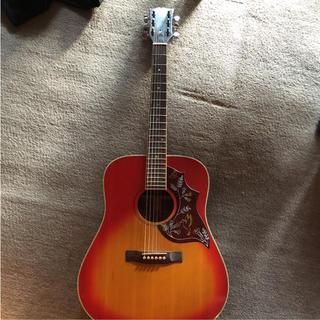 ギブソン(Gibson)のGibson standard(アコースティックギター)