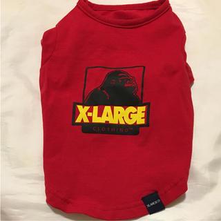X-LARGE Tシャツ