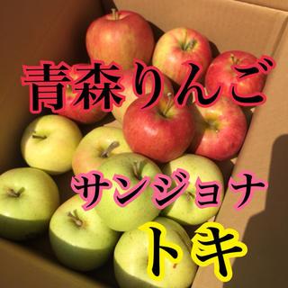 りんご 青森りんご 家庭用(フルーツ)
