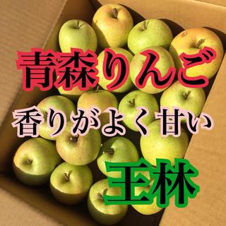 リンゴ 青森りんご 王林 家庭用(フルーツ)