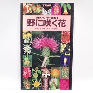 C388 野に咲く花 平野隆久 山と渓谷社(住まい/暮らし/子育て)