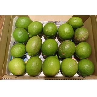 広島県大崎下島産 無農薬グリーンレモン(フルーツ)
