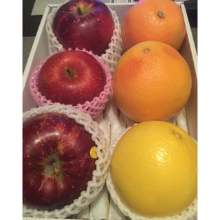りんご グレープフルーツ 6点(フルーツ)