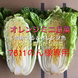 野菜セット 80 専用出品(野菜)