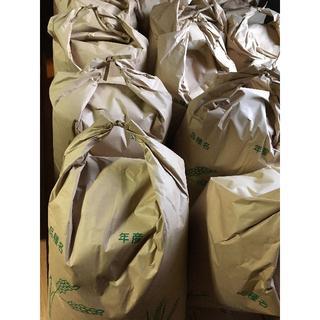 新米30㎏ 8500円送料無料(米/穀物)