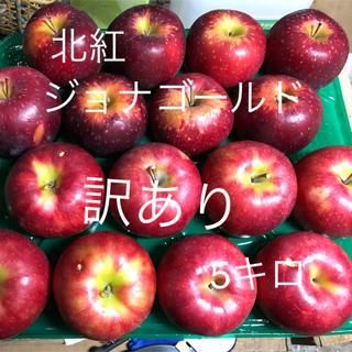 青森りんご ジョナゴールド 北紅 訳ありりんご 5キロ 送料込(フルーツ)