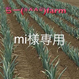 野菜セット60&九条ねぎ(野菜)