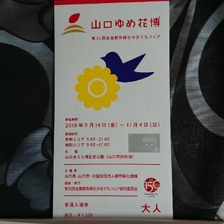 【ys47f様】山口ゆめ花博チケット 大人1名(その他)