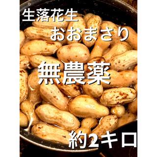 農薬不使用 生落花生 おおまさり 約2キロ(野菜)