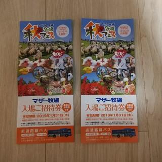 マザー牧場入場招待券2枚(遊園地/テーマパーク)
