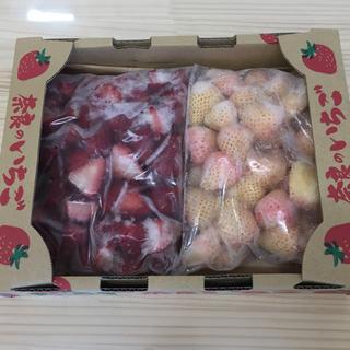 値下げ❗️奈良県産 紅白 冷凍苺 淡雪  古都華(フルーツ)