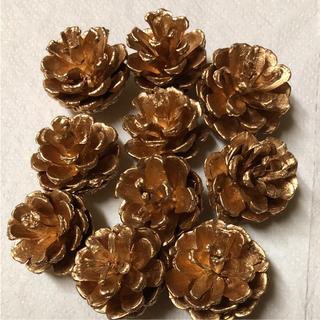 ハーバリウムクリスマス花材マツカサ ゴールド(ドライフラワー)