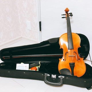 ヴァイオリン 初心者 楽器 音楽(ヴァイオリン)