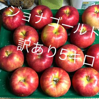青森りんご  ジョナゴールド  家庭用りんご 5キロ 送料込(フルーツ)