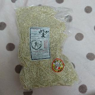 100% 愛媛県産 無農薬 はだか麦1kg もち麦と同じ効果(米/穀物)