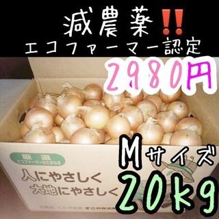 北海道 減農薬 玉ねぎ Mサイズ 20キロ(野菜)