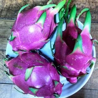 今年最後の出品!沖縄県産ドラゴンフルーツ ホワイト白果肉 2kg(フルーツ)