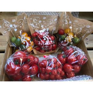 ミニトマ&フルティカトマトセット1.8kg(野菜)