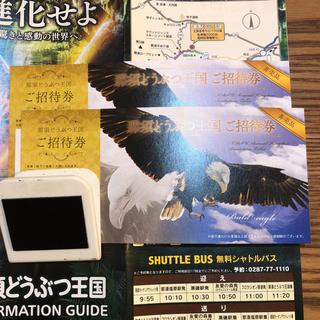 那須どうぶつ王国 ご招待券 2枚 12/2まで(動物園)