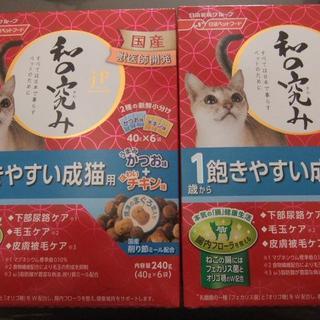 ニッシンペットフード(日清ペットフード)の国産☆キャットフード 和の究み☆1歳から 飽きやすい成猫用2箱 12袋(猫)