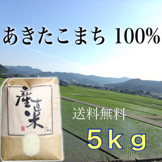 【裕子様専用】愛媛県産あきたこまち100%  新米5㎏   農家直送(米/穀物)