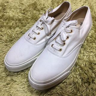 キツネ(KITSUNE)のKITSUNE キツネ 靴 シューズ スニーカー ホワイト 30.0(スニーカー)