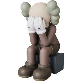 MEDICOM TOY - 送料無料 KAWS PASSING THROUGH BROWN