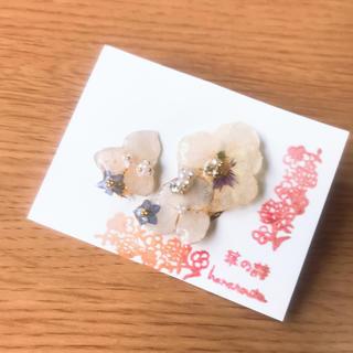勿忘草とお花のイヤカフset(イヤリング)