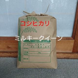 新米です!玄米5㎏(米/穀物)
