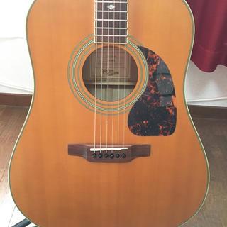 エピフォン(Epiphone)のEpiphone DR-500P オール単板メイプル 上級モデル(アコースティックギター)