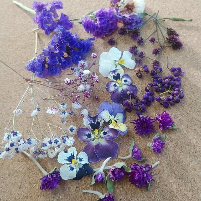 花材53 ドライフラワー 秋色紫系 レジン封入に最適な小花のセット ハンドメイドのフラワー/ガーデン(ドライフラワー)の商品写真