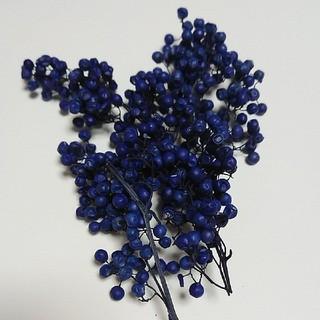 ペッパーベリー  パープル(ハーバリウム花材)(ドライフラワー)