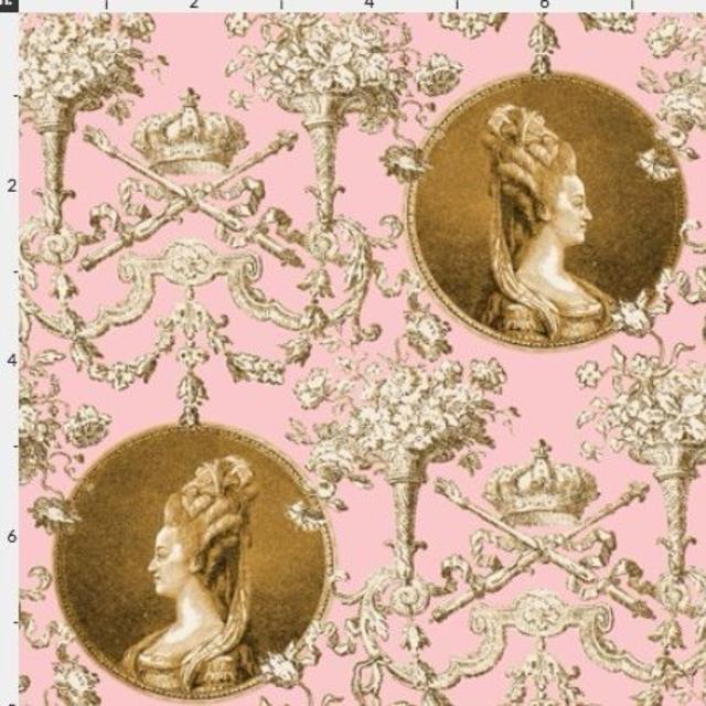 224a2d0f22034 輸入生地 マリーアントワネット ロココ調 生地 中世フレンチコート フランス宮廷 ハンドメイドの素材