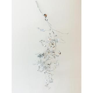 銀の枝  Silver  branch(ドライフラワー)