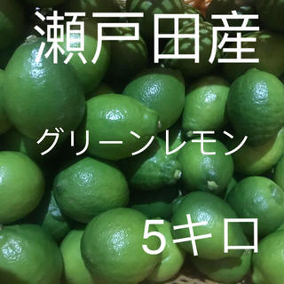 国産レモン  家庭用 5キロ(フルーツ)