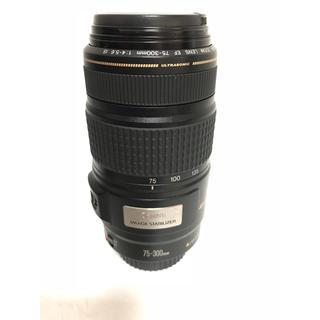 キヤノン(Canon)の望遠レンズ❤️Canon EF 75-300mm IS USM手振れ補正 (レンズ(ズーム))