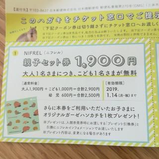 ニフレル親子セット割引券2セット(その他)