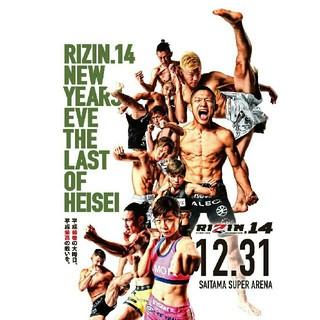 RIZIN14 メイウェザー 那須川天心 S席(格闘技/プロレス)