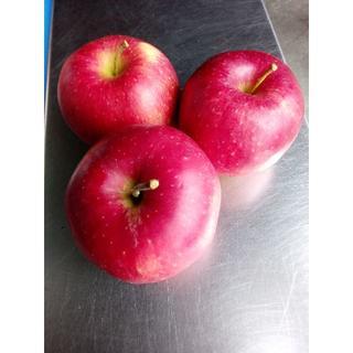 山形県産 りんご 【 ジョナゴールド 】バラ詰め 約5kg(フルーツ)
