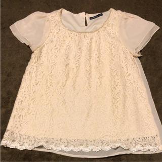 シーディーエスベーシック(C.D.S BASIC)のブラウス トップス レースTシャツ(シャツ/ブラウス(半袖/袖なし))