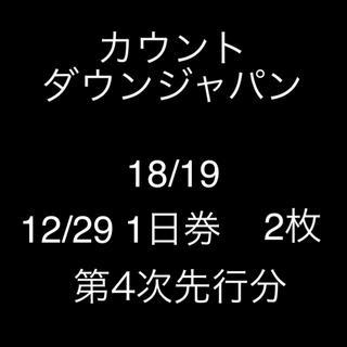 CDJ 18/19 29日券 2枚(音楽フェス)