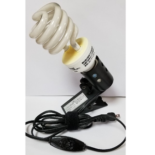 爬虫類 紫外線ライト&クリップスタンド セット(爬虫類/両生類用品)