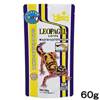 レオパゲル(爬虫類/両生類用品)