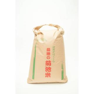 新米 菊池米 10㎏(米/穀物)