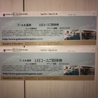 ガトーキングダム サッポロ 大人2枚(プール)
