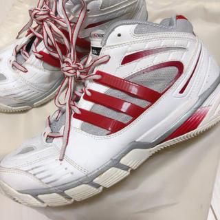 アディダス(adidas)のadidas バッシュ 赤 23.5cm(バスケットボール)