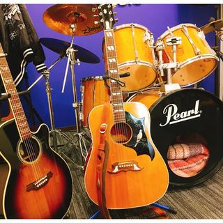 ギブソン(Gibson)の【最終値下げ】gibson  dove 2001 アコースティックギター(アコースティックギター)