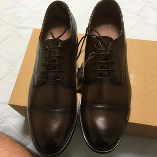 ストラット(StRutt)の新品 革靴(ドレス/ビジネス)