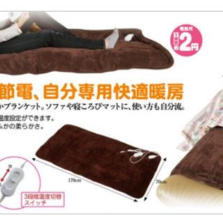 新品同様✨ホットマット 節電ごろ寝マット 電気毛布 電気マット 2円 省エネエコ(ホットカーペット)