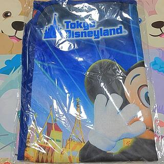 ディズニー(Disney)のブランケット  東京ディズニーリゾート  JCBマジカル(その他)